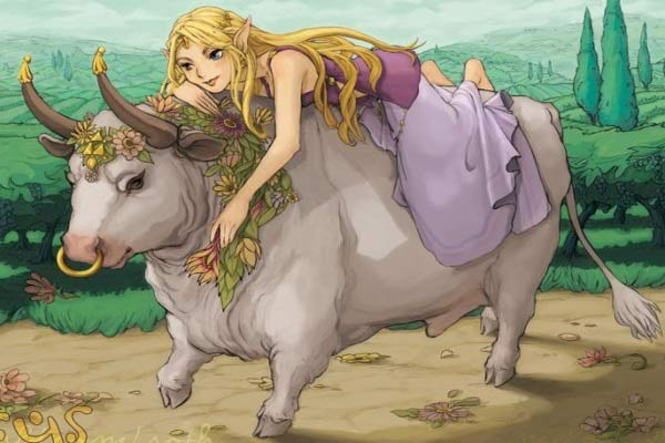 toro amore